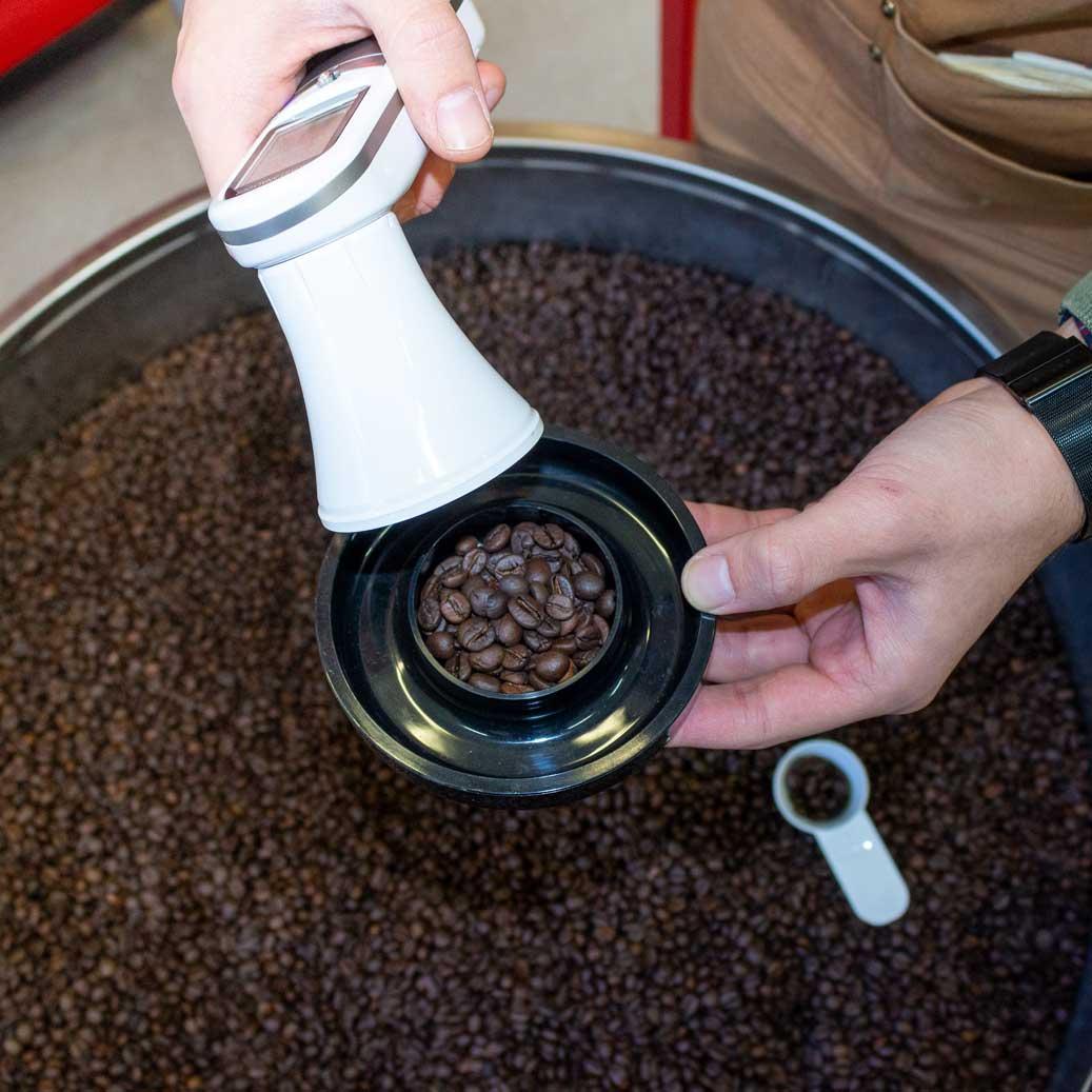 caffè trinci tostatura